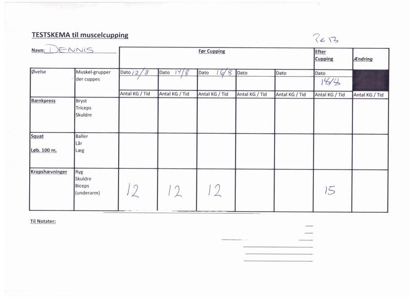 dennis-kropshvninger-testskema